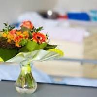 HEALTH PROFESSIONALS DEBATE - EVIDENCE-BASED PRACTICE (EBP) - FLOWER BANS IN THE NHS - ALL DISCIPLINES